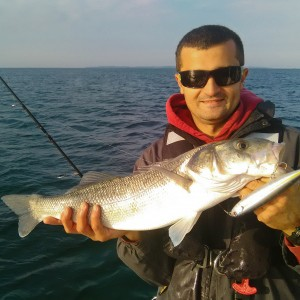 Coaching électronique et pêche