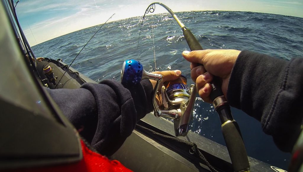 pêche au requin sur l'Ile de Groix